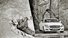 Mercedes-Benz CLS Shooting Brake, CLS 250 CDI, exterior