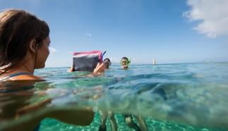 E-Case Waterproof Cases