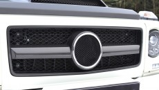Mansory 2013 Mercedes-Benz G-Class grille