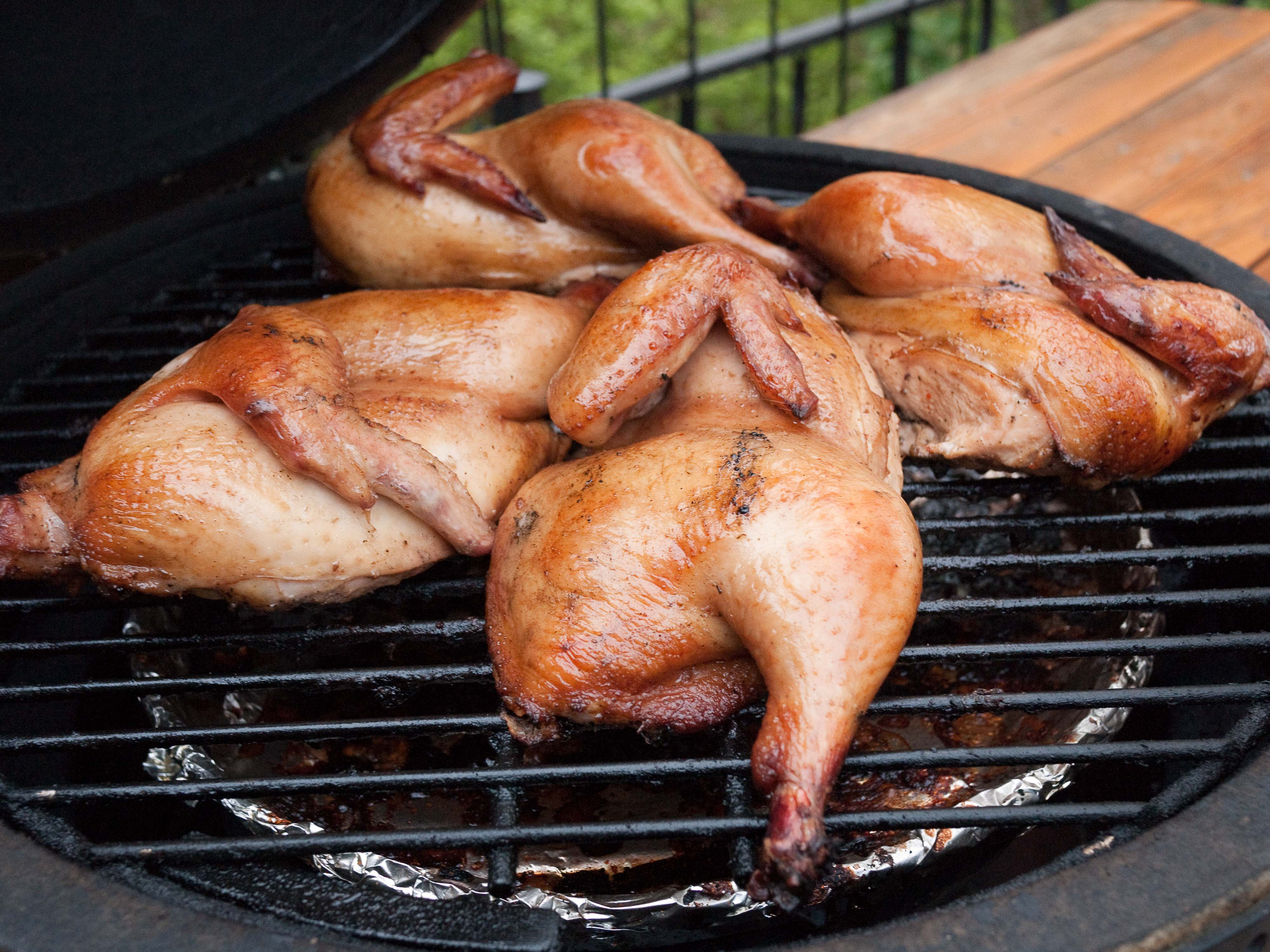 Big Green Egg Photo Gallery (Large Big Green Egg with Chicken ...