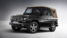 Mercedes G-Class Final Edition Exterior Grille
