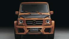 Wald Mercedes-Benz G-Class Sports Line Black Bison front grille