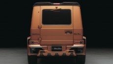 Wald Mercedes-Benz G-Class Sports Line Black Bison rear
